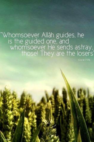 Allah guides