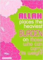 Wisdom: Burden