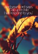 Call upon Allah