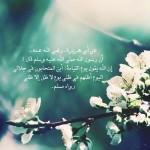 Hadith: For the sake of Allah
