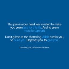 Wisdom: Heart pain