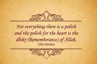 Wisdom: Heart polish