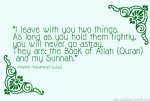 Hadith: Hold them tightly