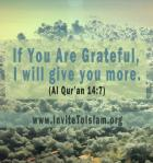 If you are grateful