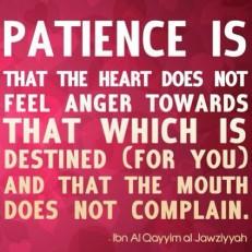 Wisdom: Patience