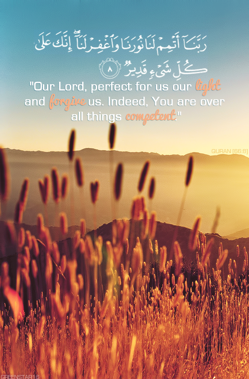 perfect-for-us-our-light-and-forgive-us pngQuran Quotes Tumblr