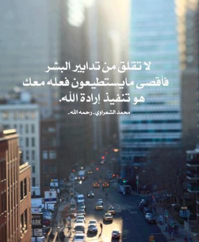 Wisdom: Sheikh Sha3rawy