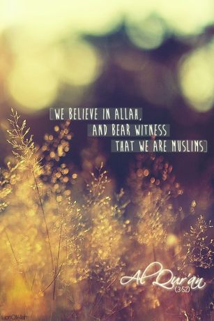 We believe in Allah