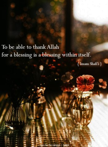 Wisdom: Imam Shafi and thanking Allah