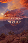 Your Lord did not abandon you