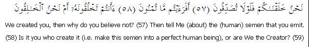 Surat Al-Waqia: Ayah 57 to 59